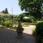The wedding rose garden at Domaine Saint Hilaire